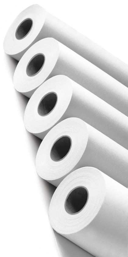 paper rolls for large format printers from GDS