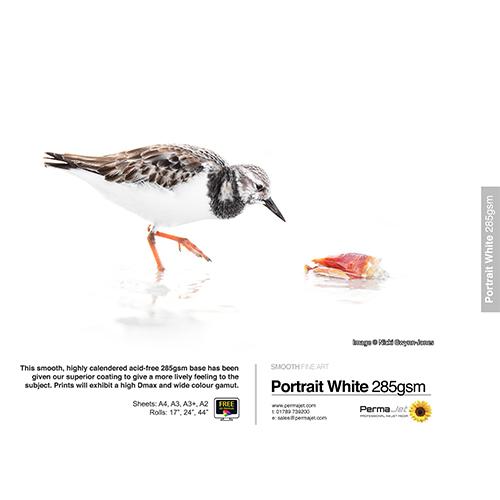 PermaJet Portrait White 285 Paper Sheets - 285gsm - A2 x 25 sheets - APJ22243