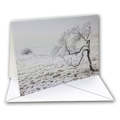 Fotospeed Fotocards - Natural Textured Bright White 315 - Greetings Cards - 315gsm - A5 x 20 Cards - 7E170C